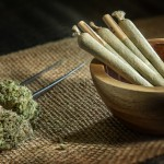 Joint and Bud