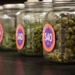 Bud Sale Jars