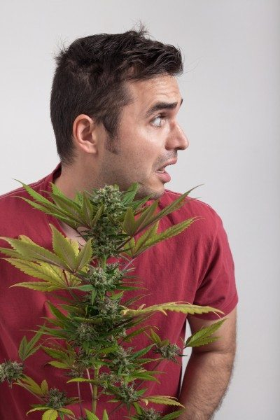 The Top 5 Marijuana Industry Trends To Fear In 2016!