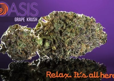 Digital 303 Custom Marijuana Graphics: Grape Crush Bud Oasis Cannabis Superstore